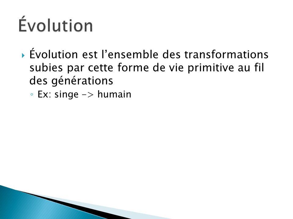 Évolution est lensemble des transformations subies par cette forme de vie primitive au fil des générations Ex: singe -> humain