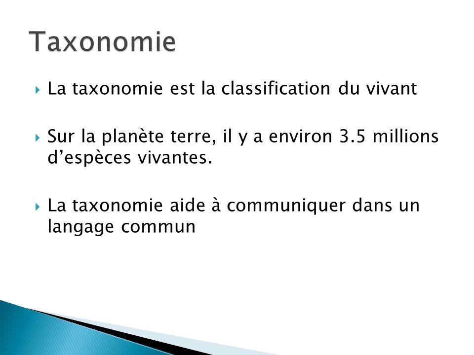 La taxonomie est la classification du vivant Sur la planète terre, il y a environ 3.5 millions despèces vivantes. La taxonomie aide à communiquer dans