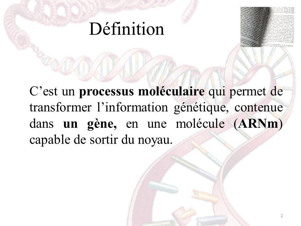 Définition Cest un processus moléculaire qui permet de transformer linformation génétique, contenue dans un gène, en une molécule (ARNm) capable de so