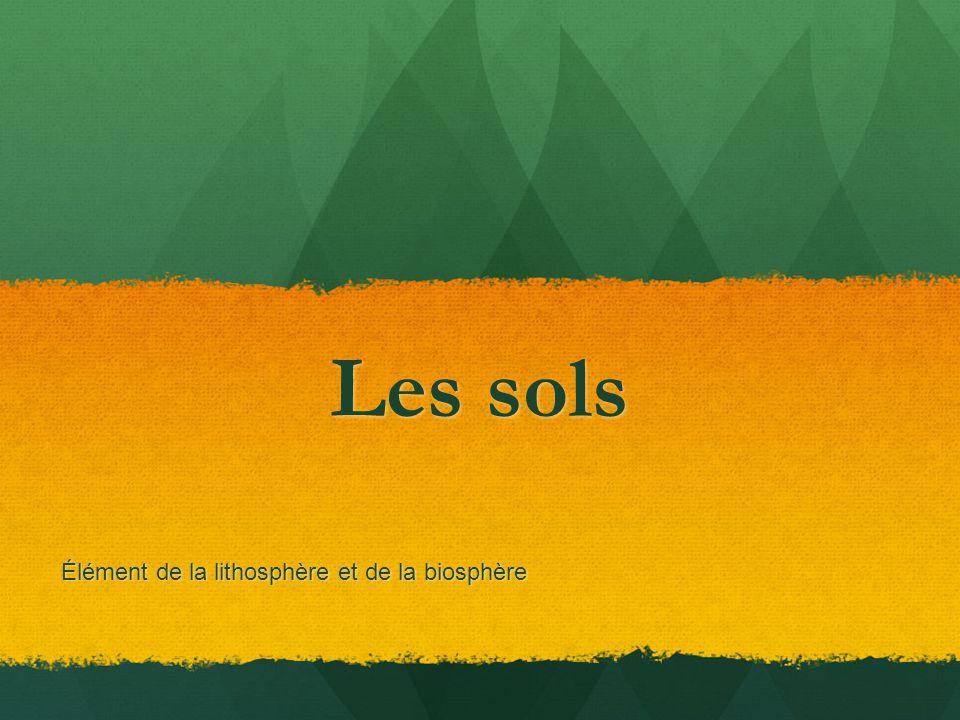 Les sols Élément de la lithosphère et de la biosphère