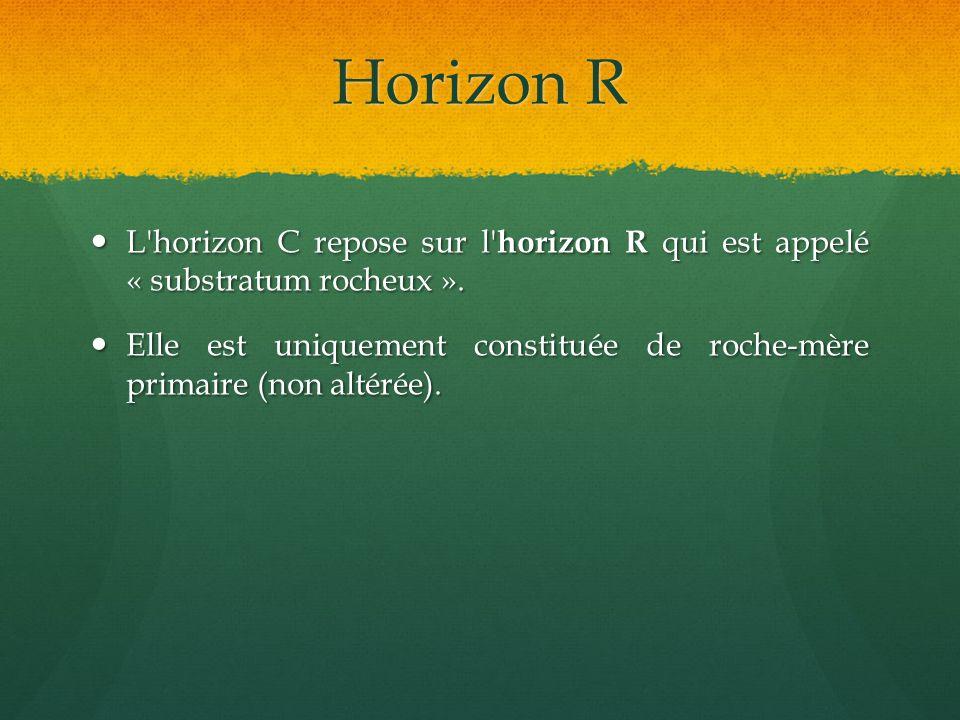 Horizon R L'horizon C repose sur l' horizon R qui est appelé « substratum rocheux ». L'horizon C repose sur l' horizon R qui est appelé « substratum r
