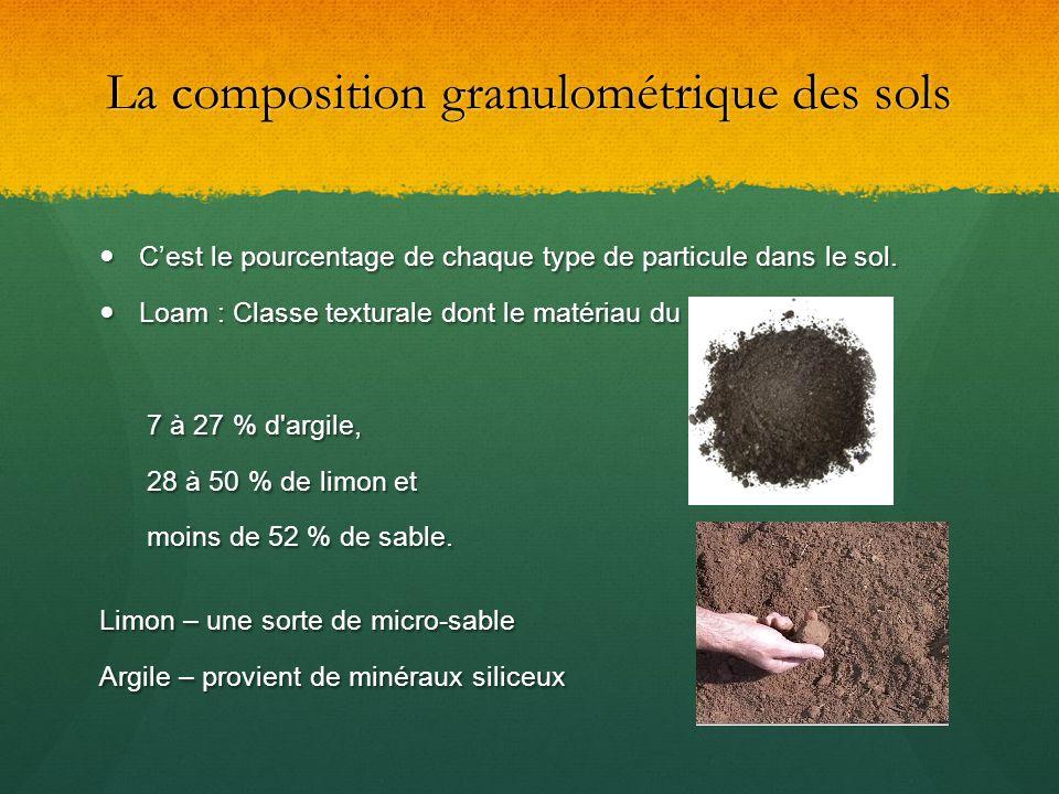La composition granulométrique des sols Cest le pourcentage de chaque type de particule dans le sol. Cest le pourcentage de chaque type de particule d