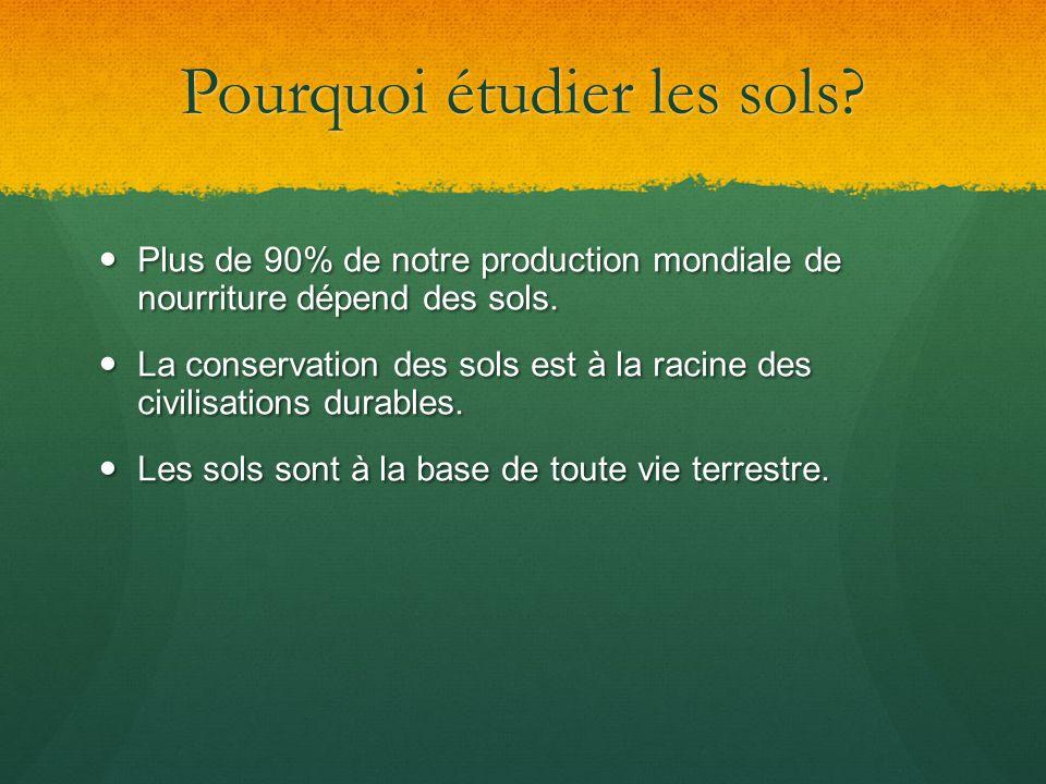 Pourquoi étudier les sols? Plus de 90% de notre production mondiale de nourriture dépend des sols. Plus de 90% de notre production mondiale de nourrit