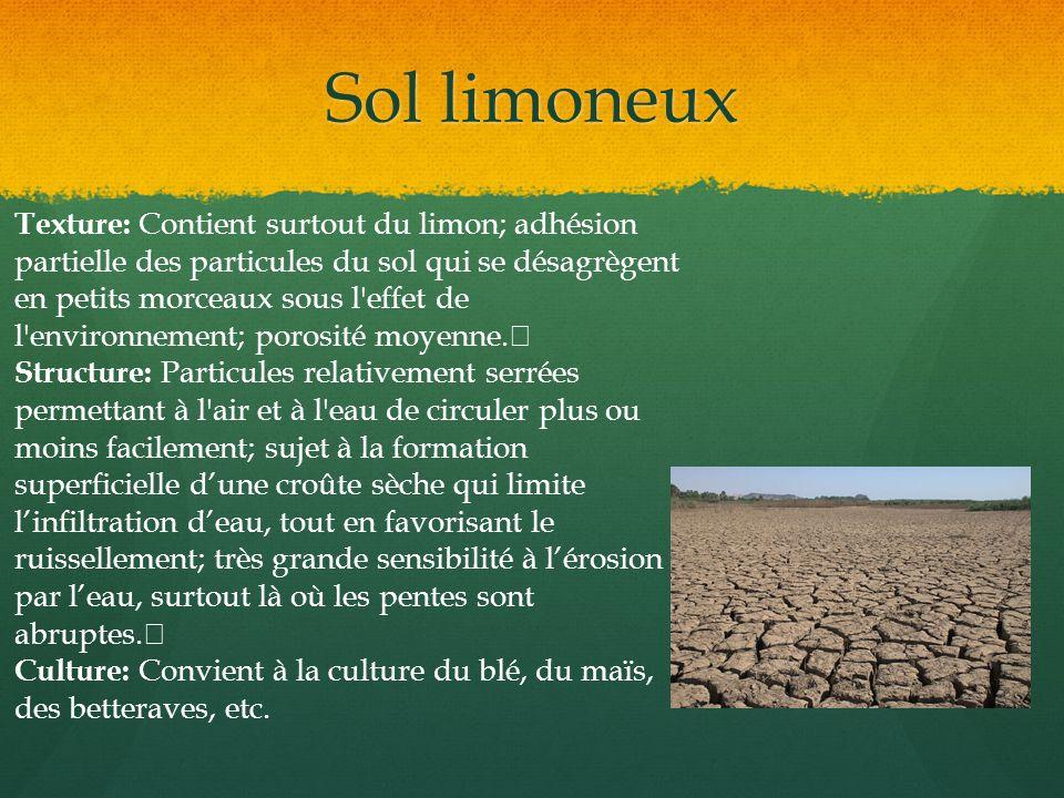 Sol limoneux Texture: Contient surtout du limon; adhésion partielle des particules du sol qui se désagrègent en petits morceaux sous l'effet de l'envi
