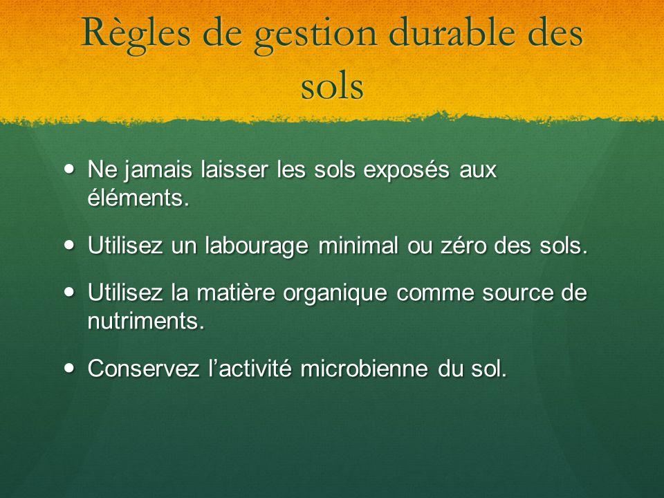 Règles de gestion durable des sols Ne jamais laisser les sols exposés aux éléments. Ne jamais laisser les sols exposés aux éléments. Utilisez un labou