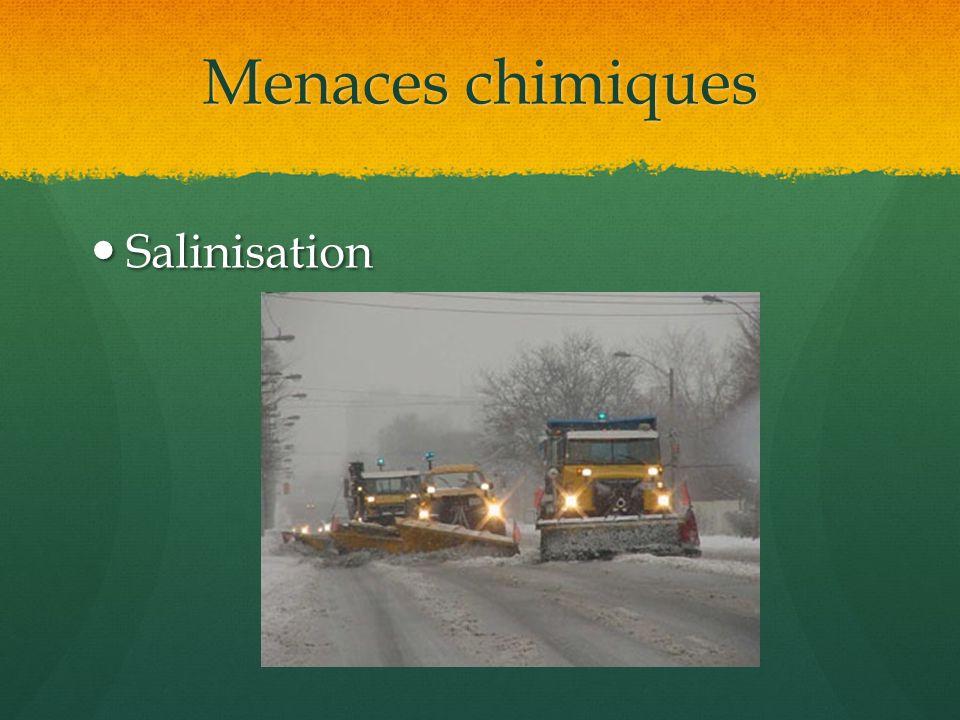 Menaces chimiques Salinisation Salinisation