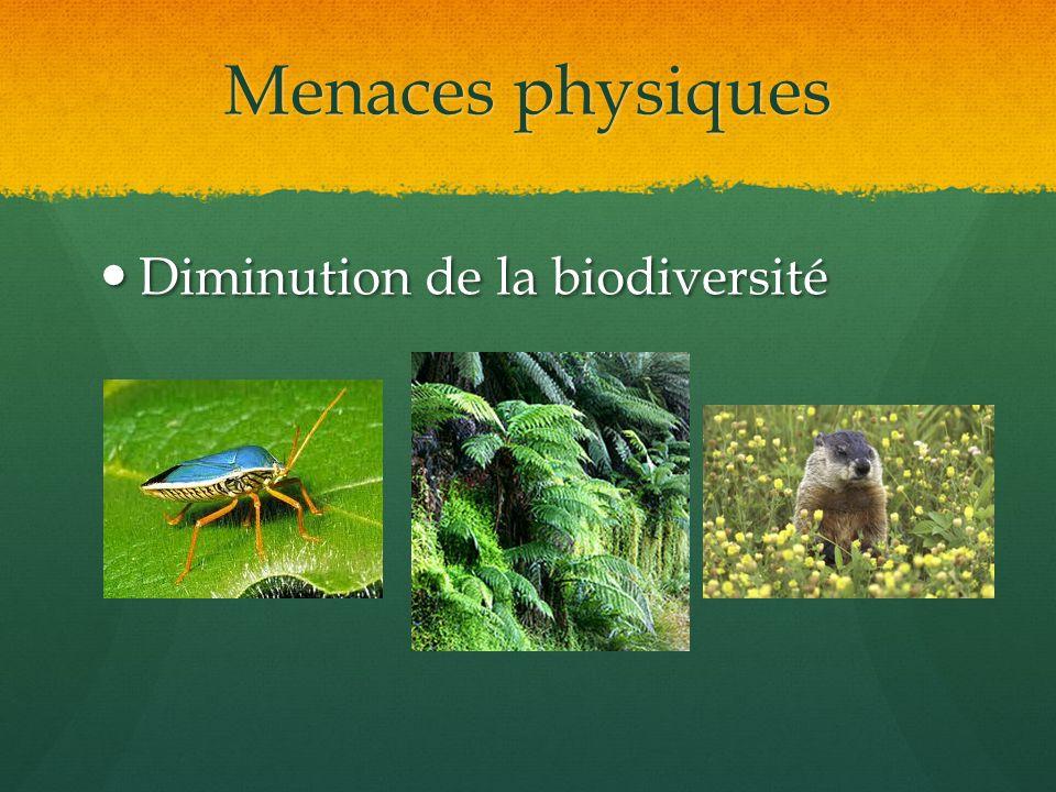 Menaces physiques Diminution de la biodiversité Diminution de la biodiversité