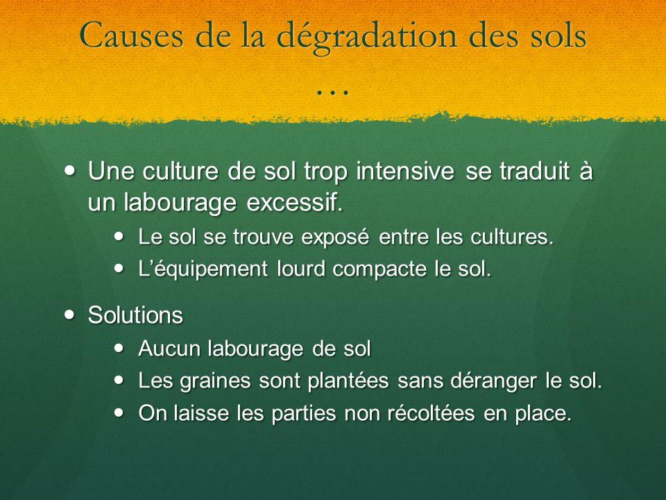 Causes de la dégradation des sols … Une culture de sol trop intensive se traduit à un labourage excessif. Une culture de sol trop intensive se traduit