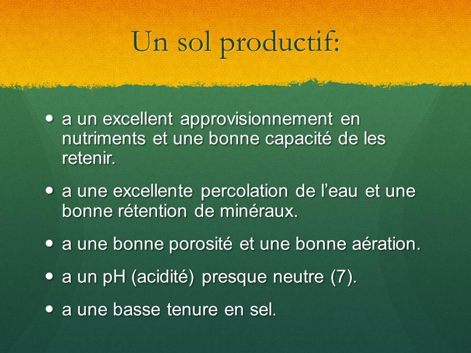 Un sol productif: a un excellent approvisionnement en nutriments et une bonne capacité de les retenir. a un excellent approvisionnement en nutriments