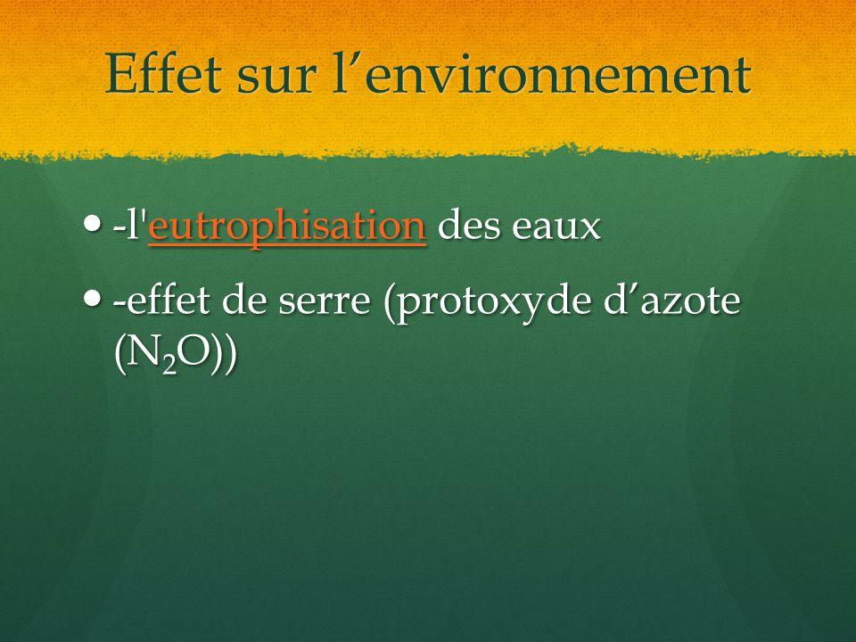 Effet sur lenvironnement -l'eutrophisation des eaux -l'eutrophisation des eauxeutrophisation -effet de serre (protoxyde dazote (N 2 O)) -effet de serr