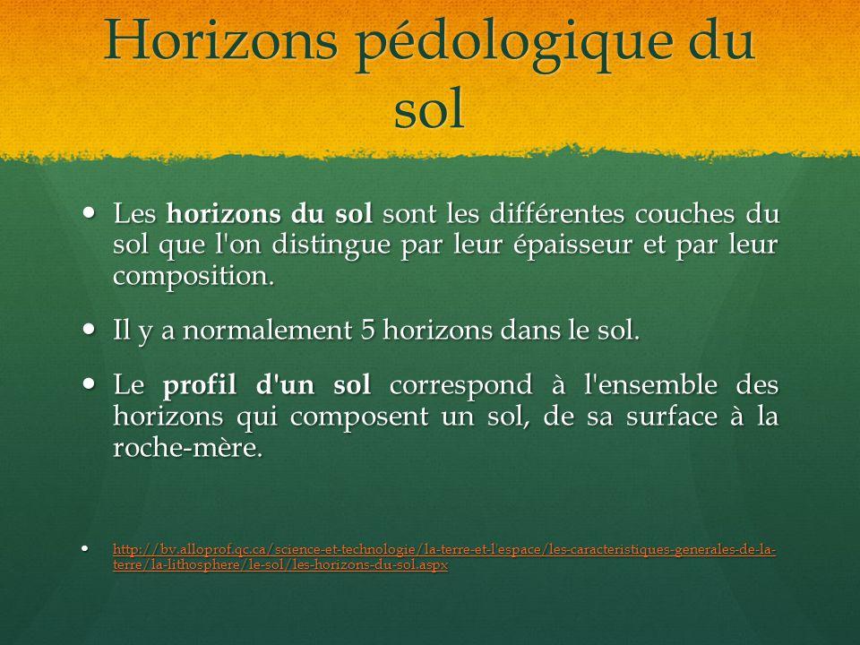 Horizons pédologique du sol Les horizons du sol sont les différentes couches du sol que l'on distingue par leur épaisseur et par leur composition. Les