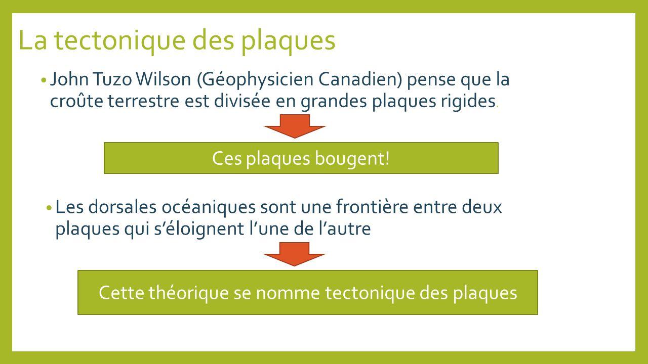 La tectonique des plaques John Tuzo Wilson (Géophysicien Canadien) pense que la croûte terrestre est divisée en grandes plaques rigides. Ces plaques b
