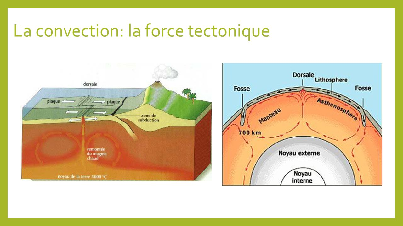 La convection: la force tectonique