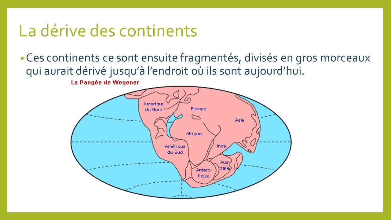La dérive des continents Ces continents ce sont ensuite fragmentés, divisés en gros morceaux qui aurait dérivé jusquà lendroit où ils sont aujourdhui.