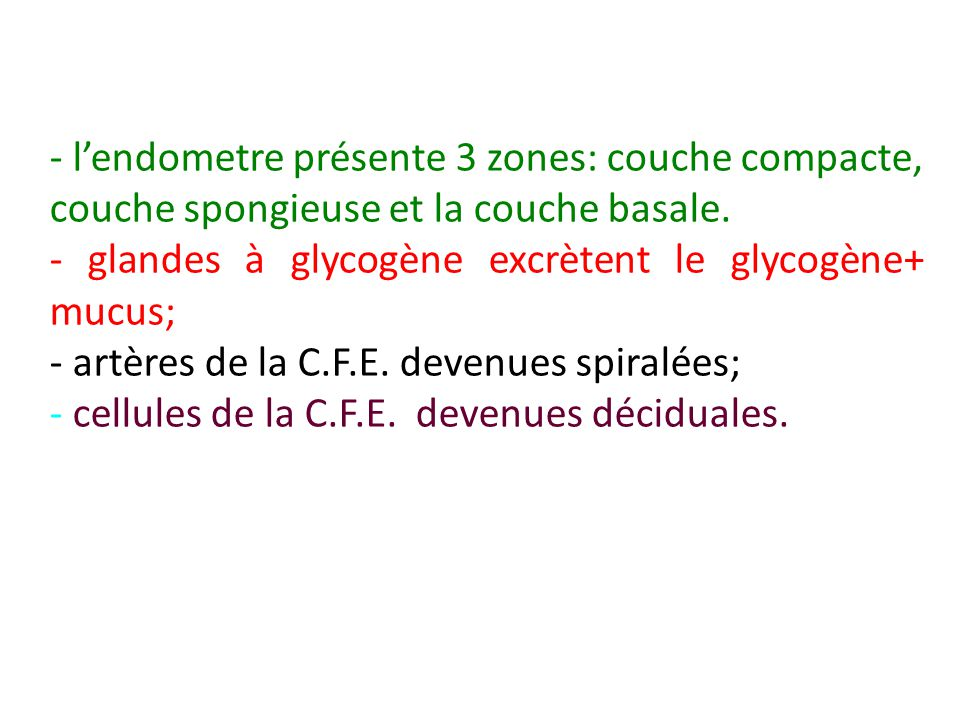 - lendometre présente 3 zones: couche compacte, couche spongieuse et la couche basale. - glandes à glycogène excrètent le glycogène+ mucus; - artères