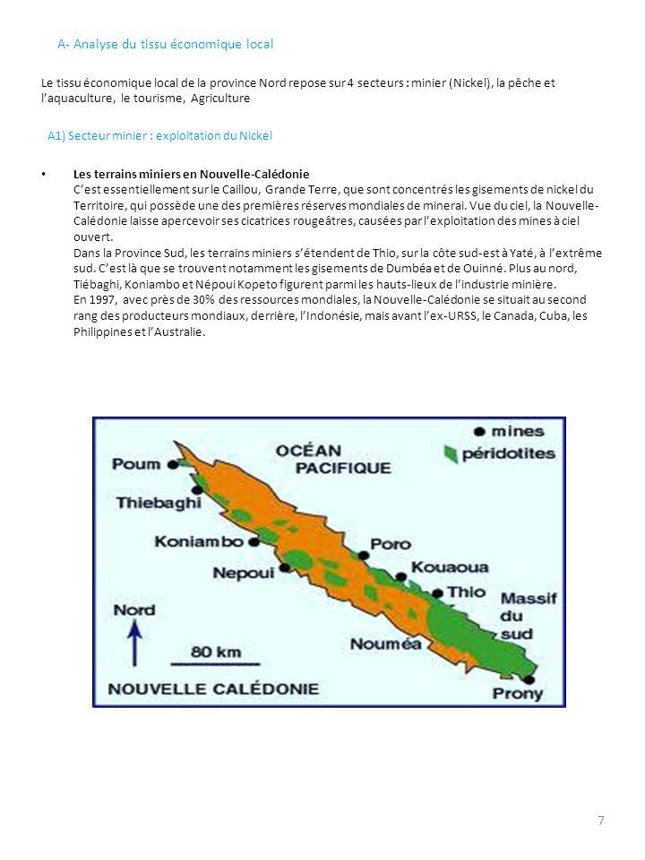 A- Analyse du tissu économique local Le tissu économique local de la province Nord repose sur 4 secteurs : minier (Nickel), la pêche et laquaculture,