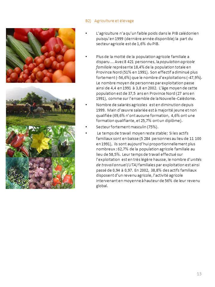 B2) Agriculture et élevage Lagriculture na quun faible poids dans le PIB calédonien puisquen 1999 (dernière année disponible) la part du secteur agric