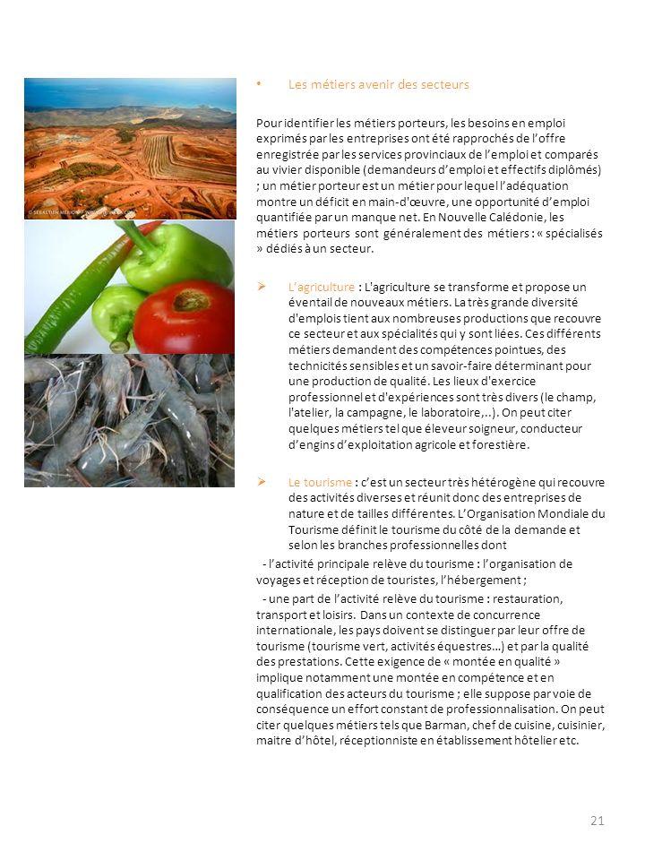 Mines : Les quatre métiers spécialisés de la mine sont en déficit ; toutefois, les effectifs peuvent être équilibrés moyennant un effort de formation ponctuel ; des besoins nouveaux devraient être perceptibles à lachèvement de la construction de lusine du Nord.
