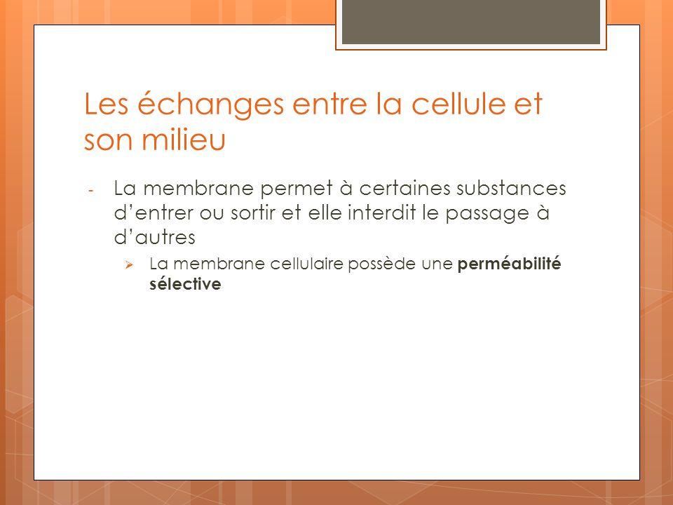 Les échanges entre la cellule et son milieu - La membrane permet à certaines substances dentrer ou sortir et elle interdit le passage à dautres La mem