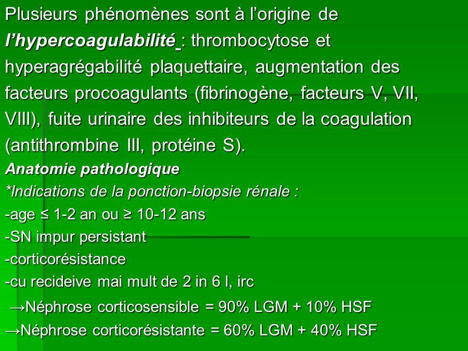 Plusieurs phénomènes sont à lorigine de lhypercoagulabilité : thrombocytose et hyperagrégabilité plaquettaire, augmentation des facteurs procoagulants (fibrinogène, facteurs V, VII, VIII), fuite urinaire des inhibiteurs de la coagulation (antithrombine III, protéine S).