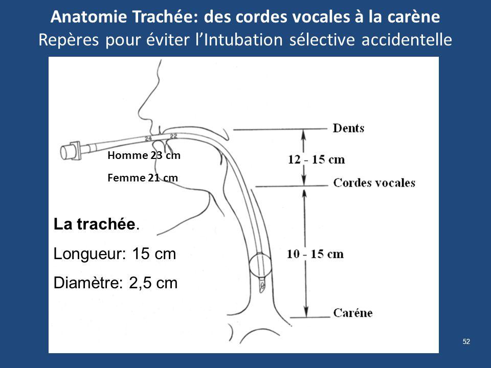 52 Anatomie Trachée: des cordes vocales à la carène Repères pour éviter lIntubation sélective accidentelle La trachée. Longueur: 15 cm Diamètre: 2,5 c