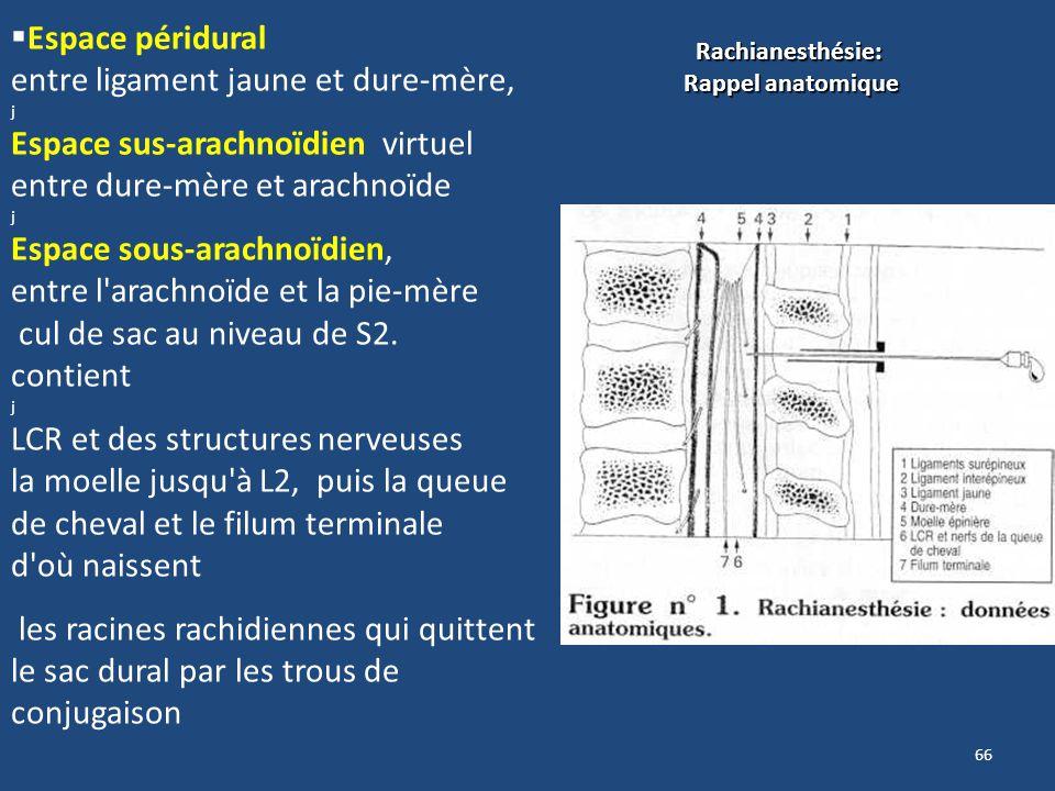 Espace péridural entre ligament jaune et dure-mère, j Espace sus-arachnoïdien virtuel entre dure-mère et arachnoïde j Espace sous-arachnoïdien, entre
