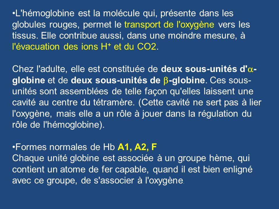 L hémoglobine est la molécule qui, présente dans les globules rouges, permet le transport de l oxygène vers les tissus.