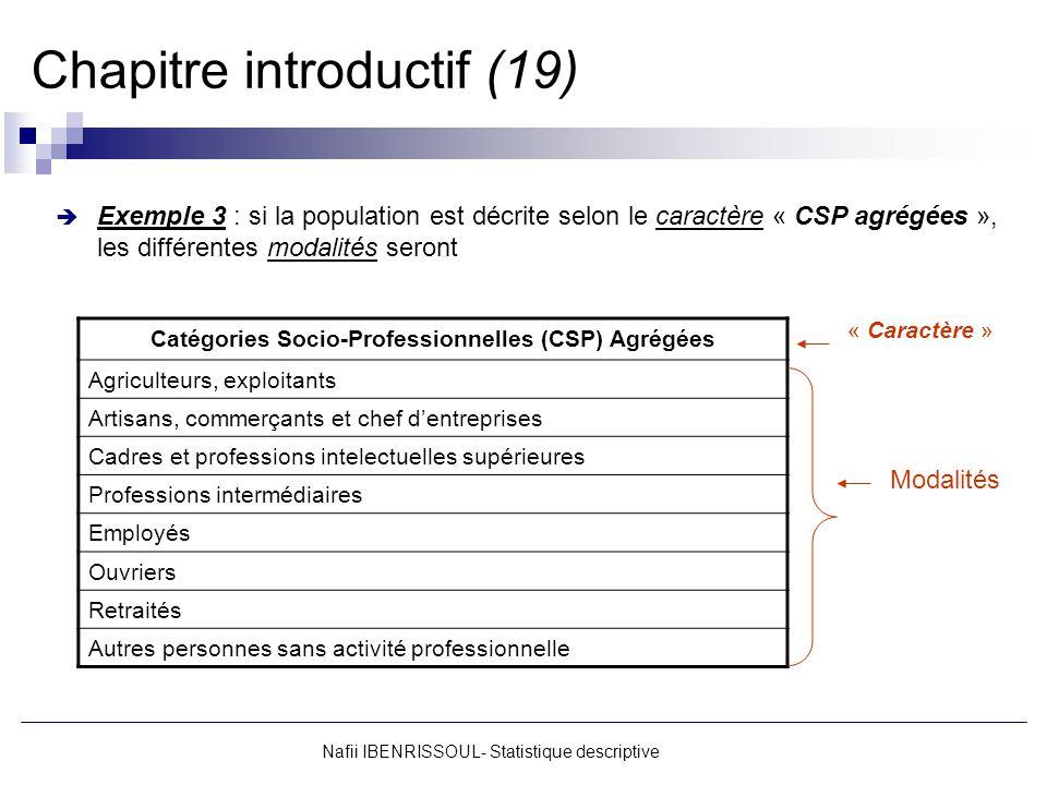 Nafii IBENRISSOUL- Statistique descriptive Chapitre introductif (19) Exemple 3 : si la population est décrite selon le caractère « CSP agrégées », les
