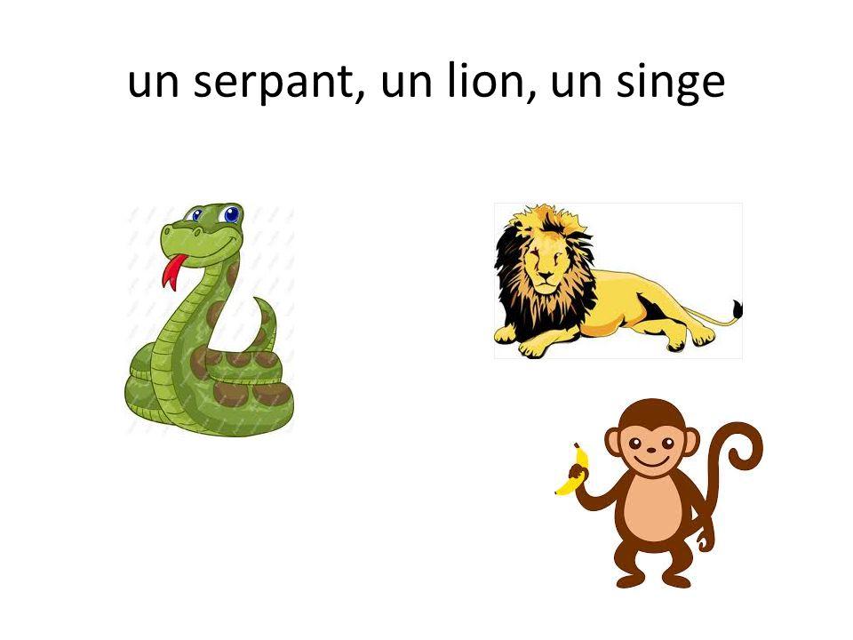 un serpant, un lion, un singe