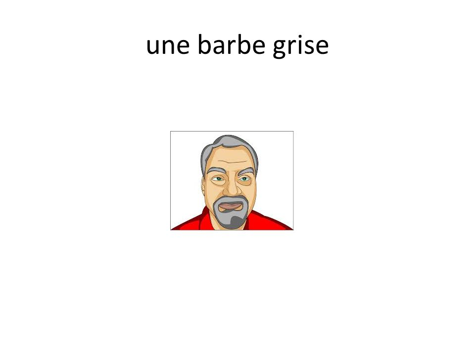 une barbe grise