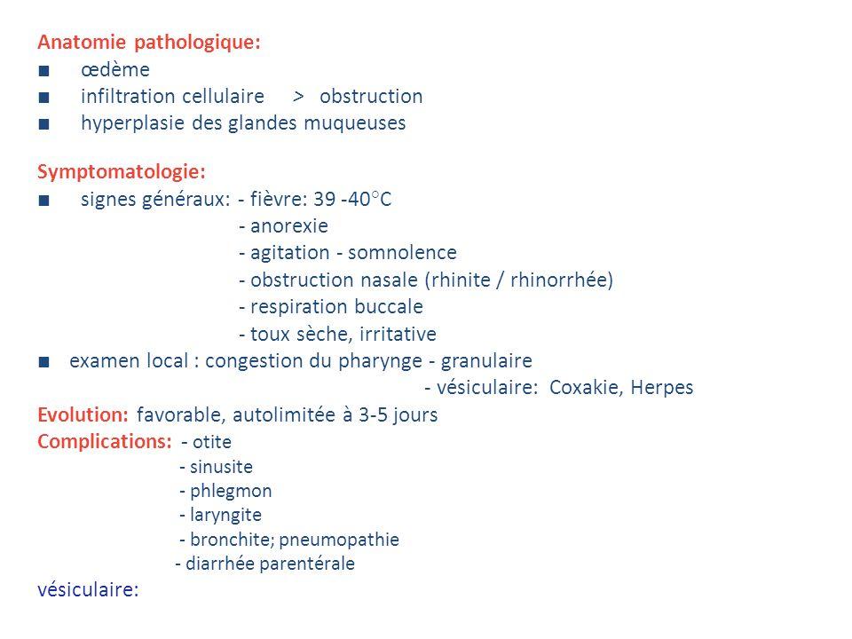 Anatomie pathologique: œdème infiltration cellulaire> obstruction hyperplasie des glandes muqueuses Symptomatologie: signes généraux: - fièvre: 39 -40°C - anorexie - agitation - somnolence - obstruction nasale (rhinite / rhinorrhée) - respiration buccale - toux sèche, irritative examen local : congestion du pharynge - granulaire - vésiculaire: Coxakie, Herpes Evolution: favorable, autolimitée à 3-5 jours Complications: - otite - sinusite - phlegmon - laryngite - bronchite; pneumopathie - diarrhée parentérale vésiculaire: