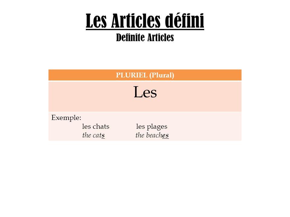 Les Articles défini Definite Articles PLURIEL (Plural) Les Exemple: les chats les plages the cat s the beach es
