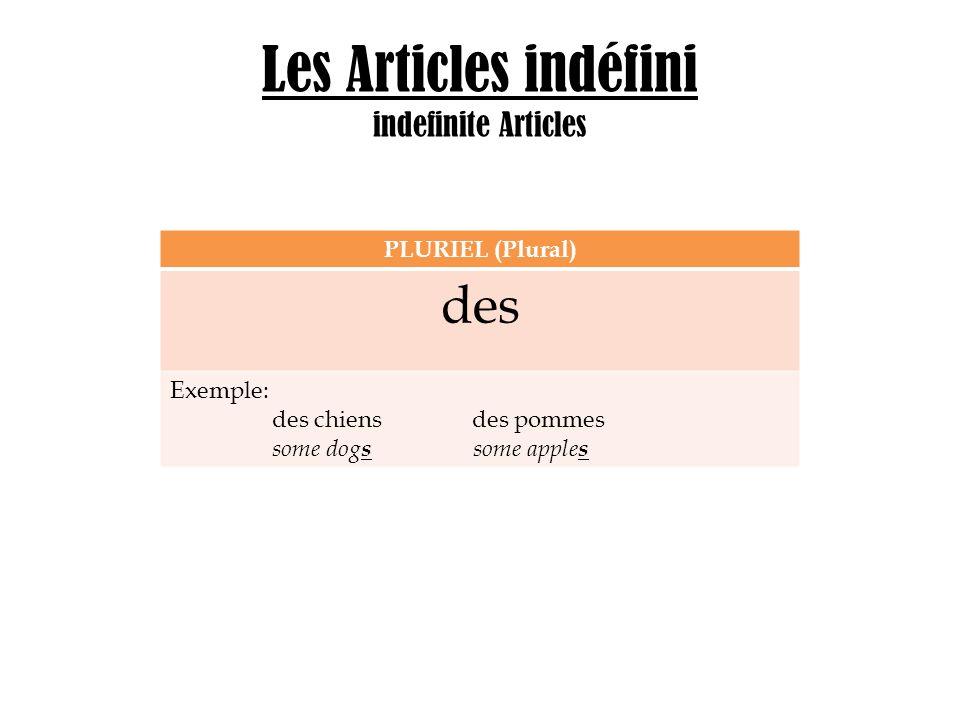 Les Articles indéfini indefinite Articles PLURIEL (Plural) des Exemple: des chiens des pommes some dog s some apple s