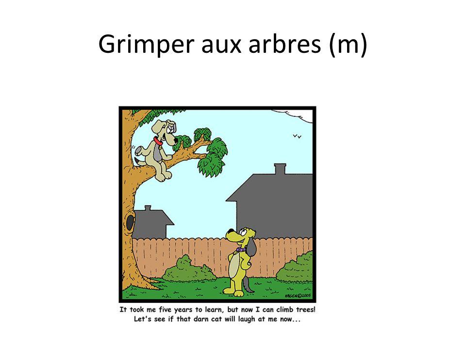 Grimper aux arbres (m)