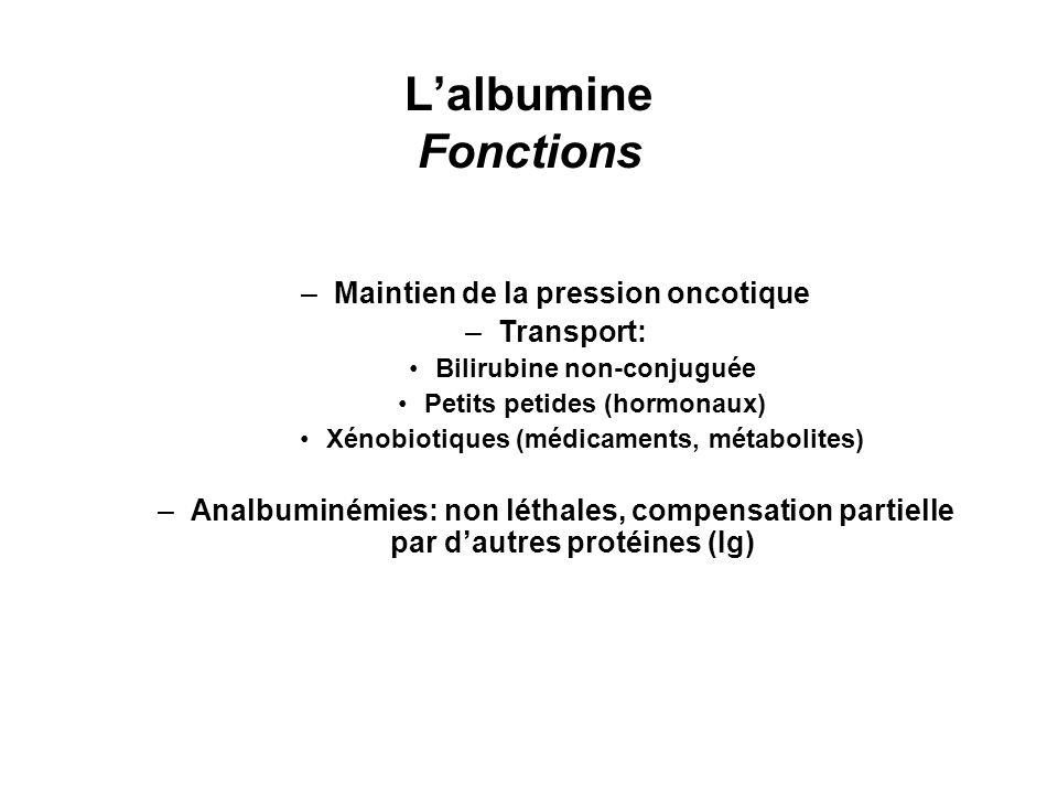 Lalbumine Fonctions –Maintien de la pression oncotique –Transport: Bilirubine non-conjuguée Petits petides (hormonaux) Xénobiotiques (médicaments, mét