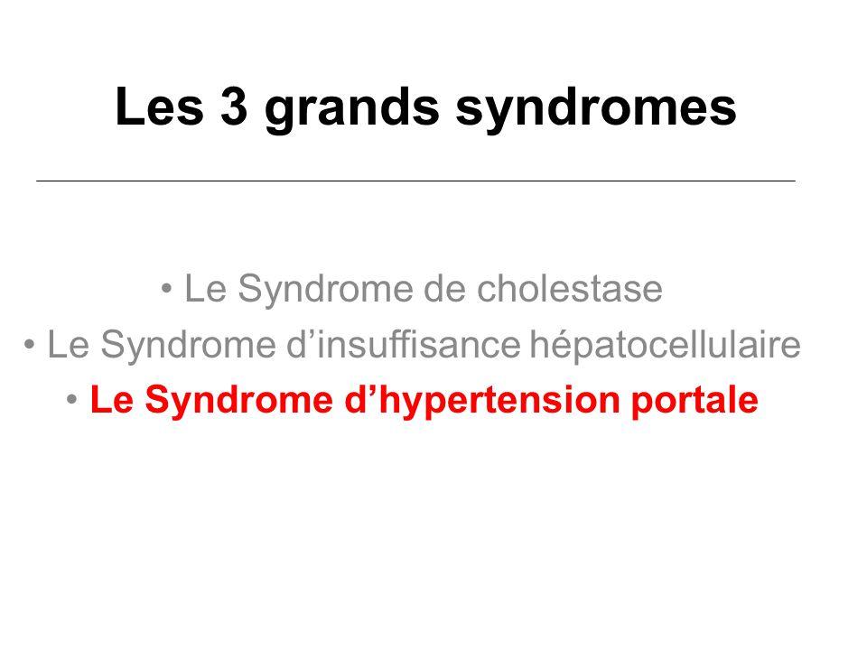 Les 3 grands syndromes Le Syndrome de cholestase Le Syndrome dinsuffisance hépatocellulaire Le Syndrome dhypertension portale