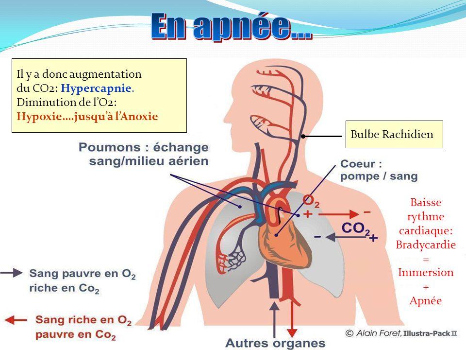 DANGER: PCM ou SYNCOPE ANOXIQUE «Normalement » Cest dabord laugmentation du CO2 (hypercapnie) qui donne envie de ventiler et non le manque dO2 (hypoxie) O2 Envie de respirer ( Hypercapnie ) Besoin de respirer ( Hypoxie) CO2