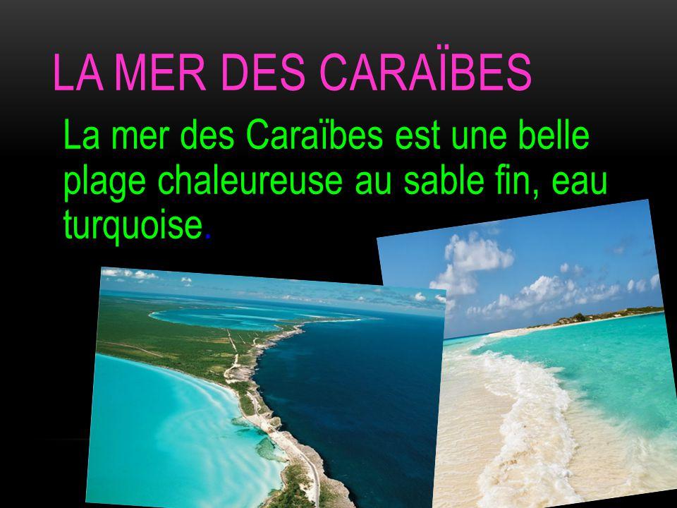 LA MER DES CARAÏBES La mer des Caraïbes est une belle plage chaleureuse au sable fin, eau turquoise.