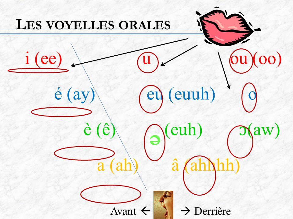 i (ee)u ou (oo) é (ay) eu (euuh) o è (ê) (euh) ɔ (aw) a (ah)â (ahhhh) L ES VOYELLES ORALES Avant Derrière