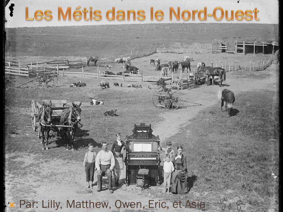 Les Métis avaient bein accueilli le vote de lacte de Manitoba, en 1870.