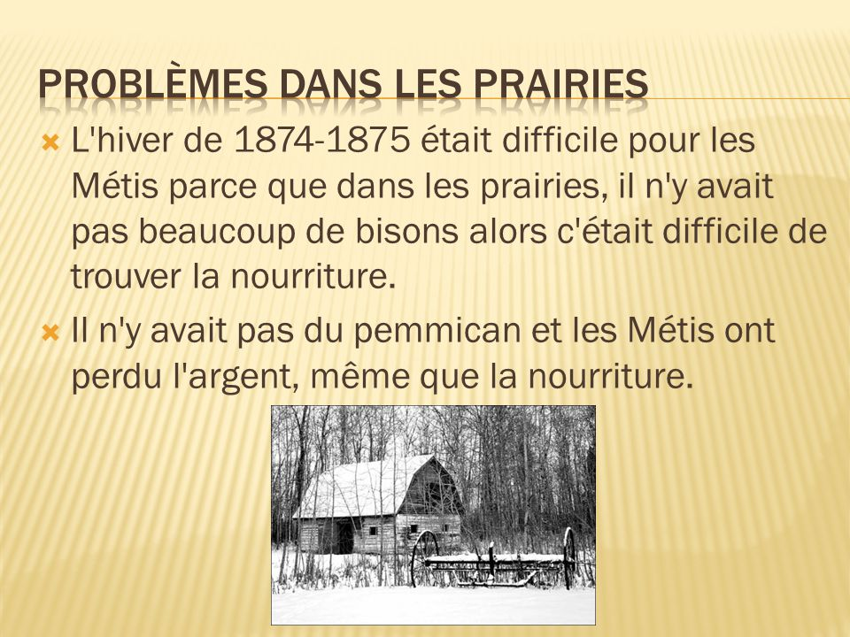 Au printemps un groupe de Métis a commencé la chasse de bison en Saint-Laurent.