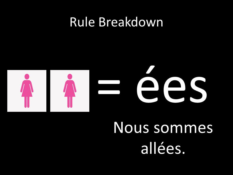 Rule Breakdown = ées Nous sommes allées.