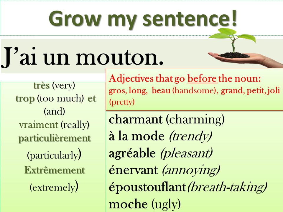 Grow my sentence.Jai un mouton.