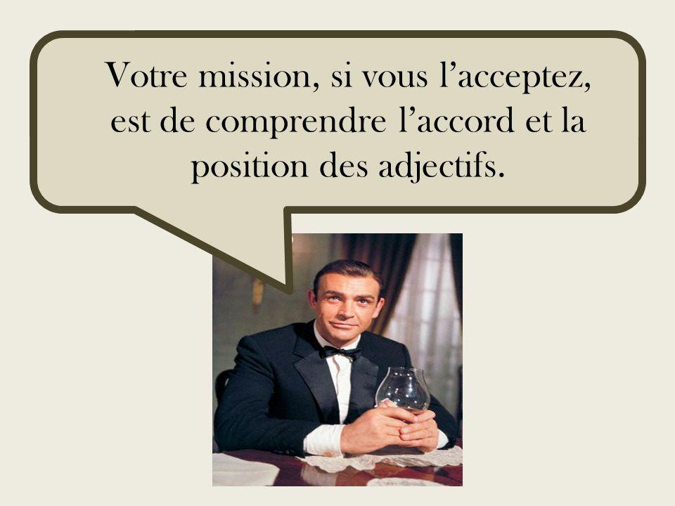 Votre mission, si vous lacceptez, est de comprendre laccord et la position des adjectifs.