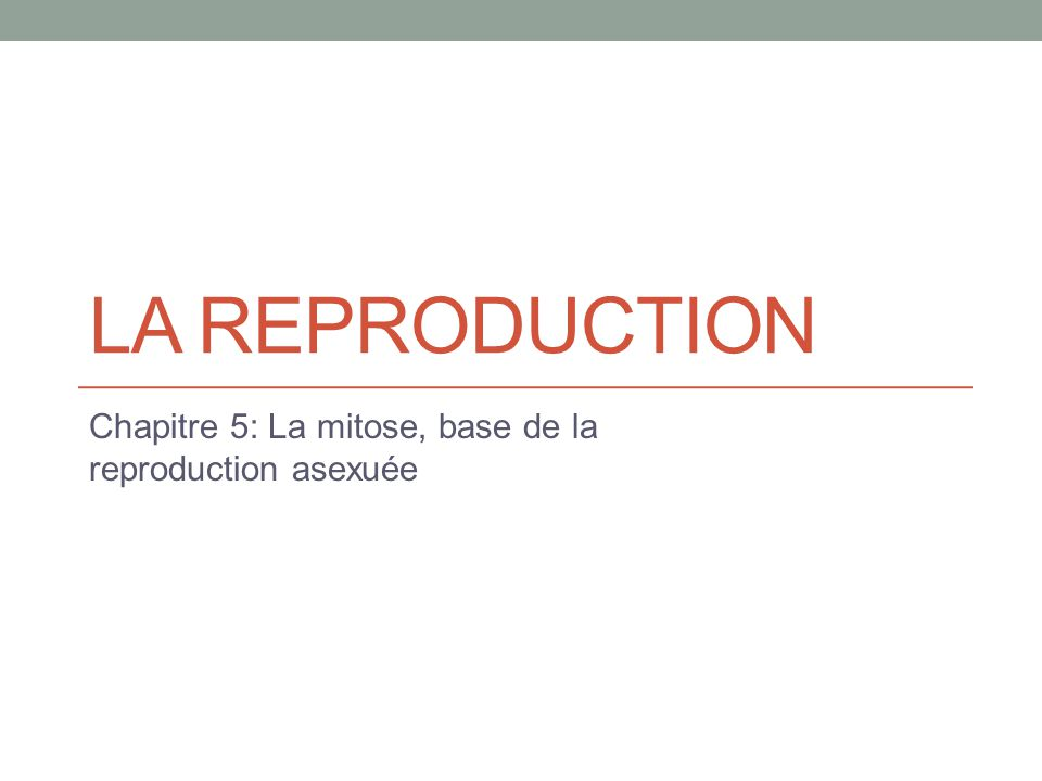 LA REPRODUCTION Chapitre 5: La mitose, base de la reproduction asexuée