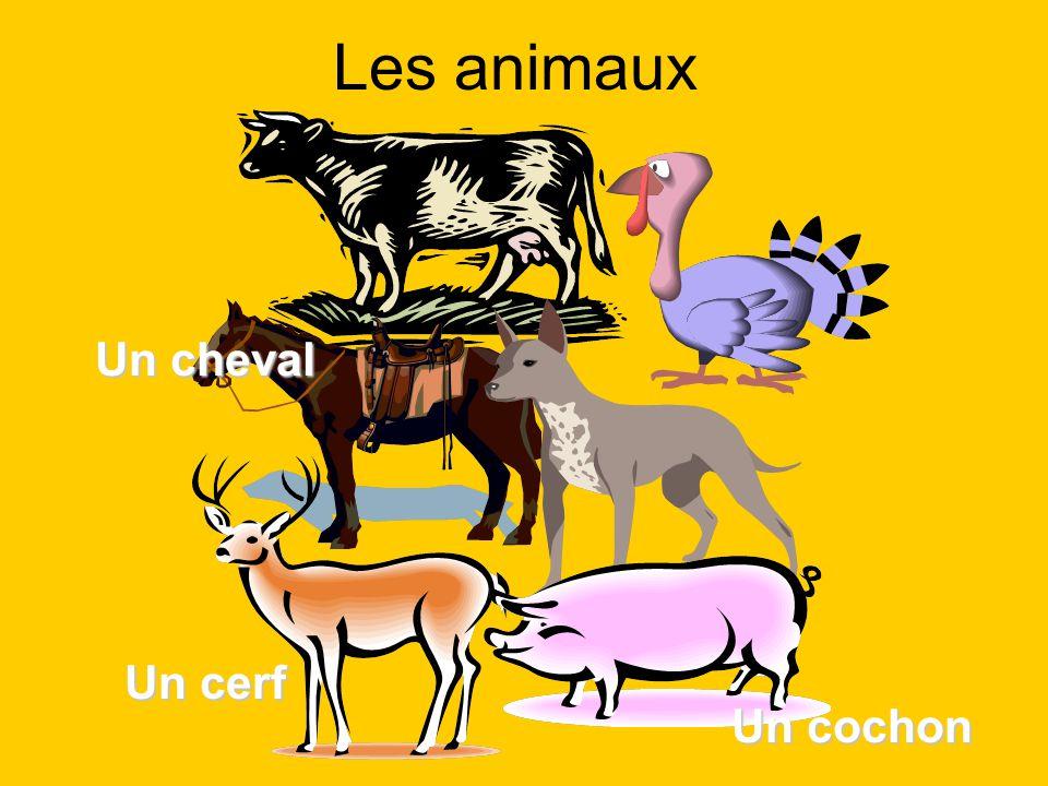 Les animaux Un cochon Un cheval Un cerf