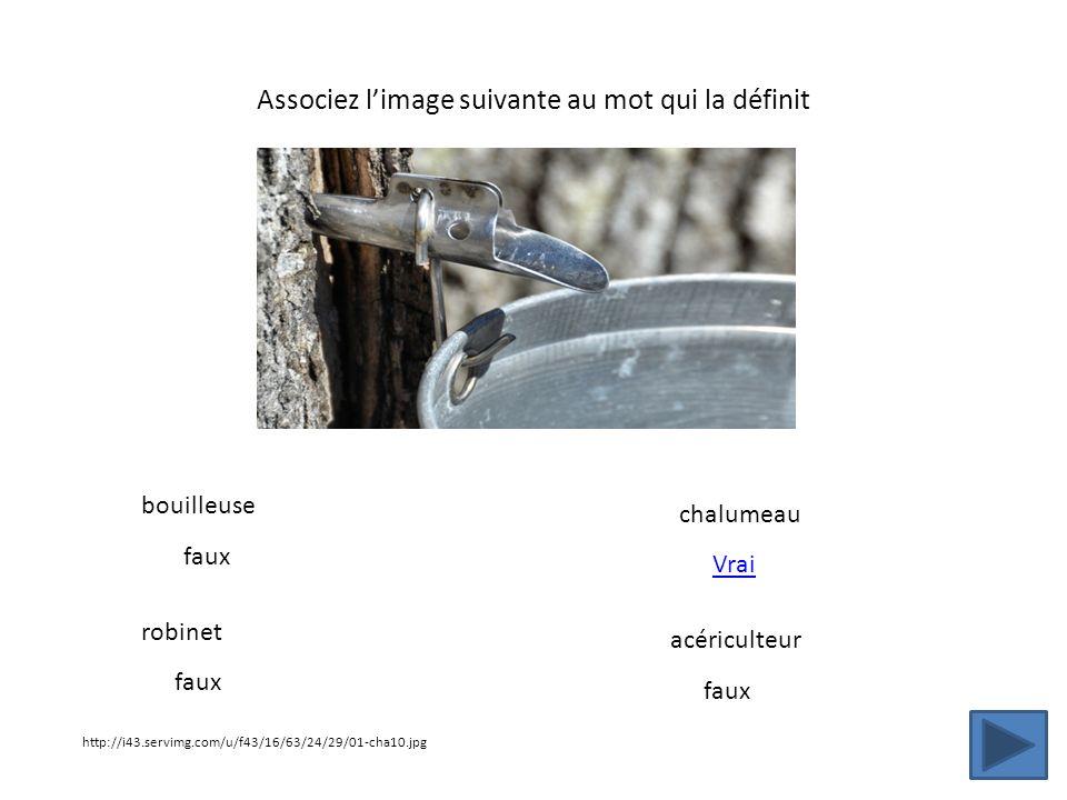 Associez limage suivante au mot qui la définit http://i43.servimg.com/u/f43/16/63/24/29/01-cha10.jpg bouilleuse robinet chalumeau acériculteur faux Vr
