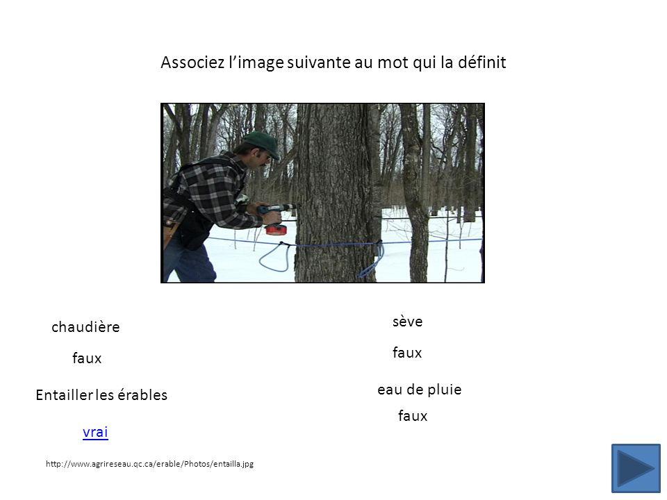 Associez limage suivante au mot qui la définit http://www.agrireseau.qc.ca/erable/Photos/entailla.jpg chaudière Entailler les érables sève eau de plui