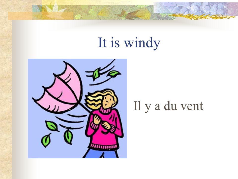 It is cold Il fait froid
