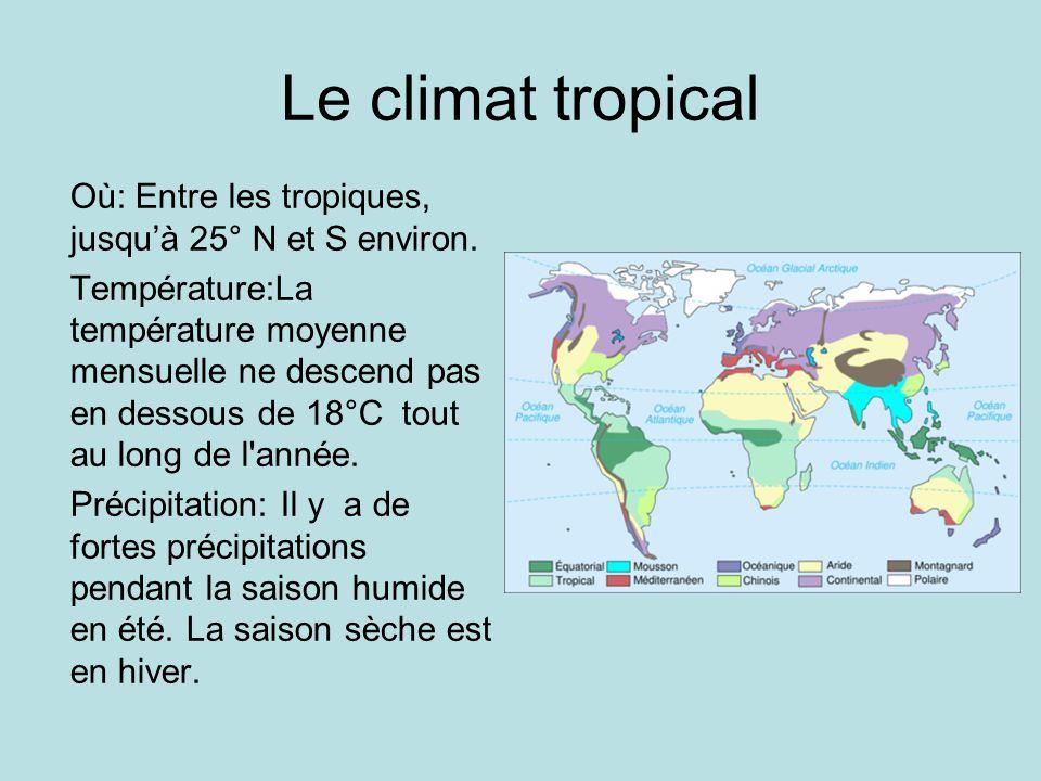 Le climat tropical Où: Entre les tropiques, jusquà 25° N et S environ. Température:La température moyenne mensuelle ne descend pas en dessous de 18°C